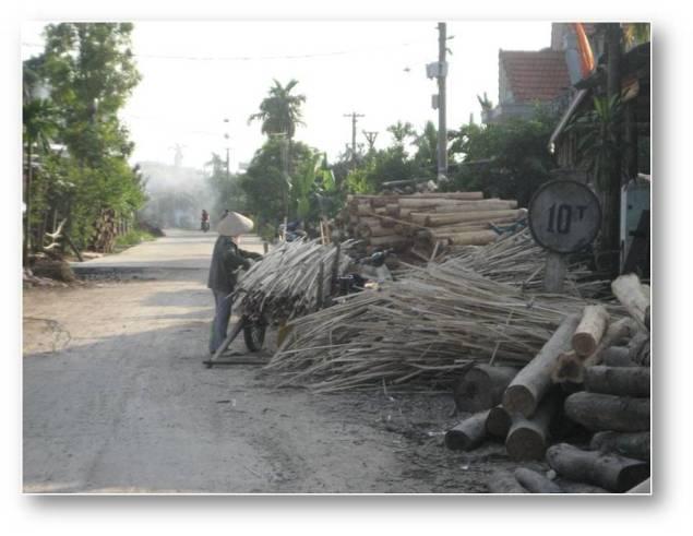 HÌNH (LĐV) Nghề 'lột da rừng' – việc nặng nhọc, nguy hiểm nhưng lương 70-100 ngàn mỗi ngày