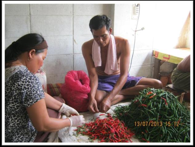 LDV Thailand Picture2