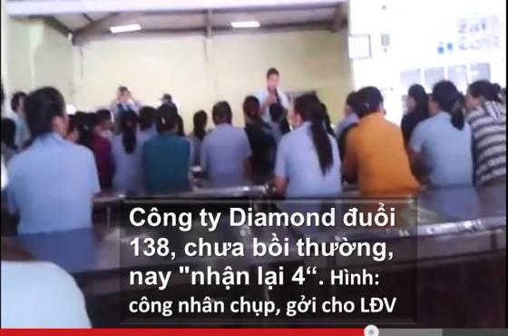 illus BanTinLDV 20150126 Cty Diamond duoi 138 cn, chua boi thuong, 'nhan lai 4'