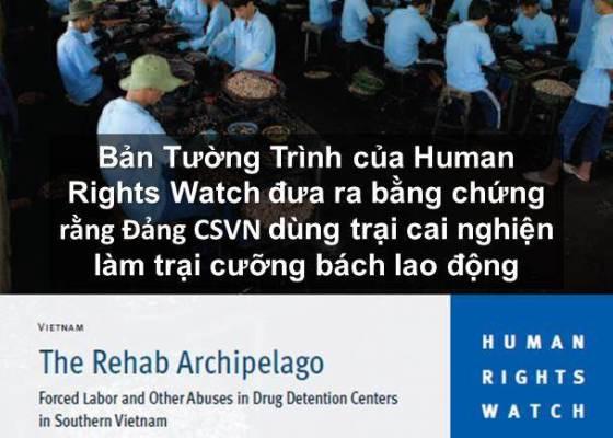 QuanDiemLDV 20150201 Trai cai nghien la trai cuong bach lao dong